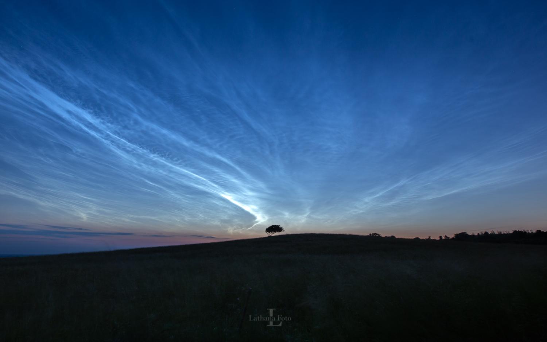 180619 Lysende natskyer over det skæve træ i Bjergene, Odsherred