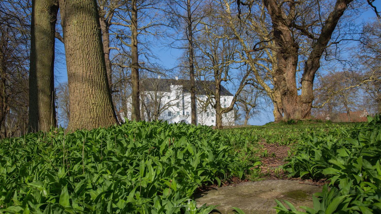 300319 Dragsholm Slot